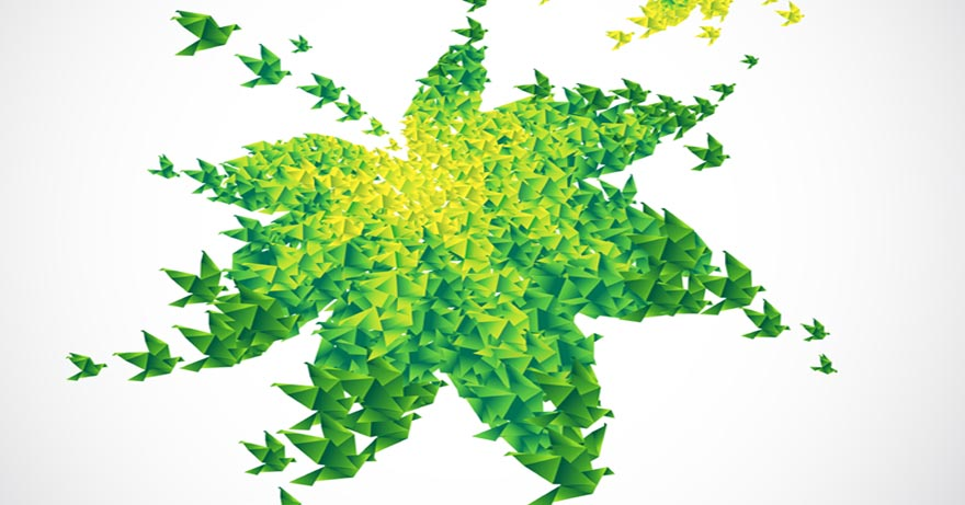 Montenegro Green Certified